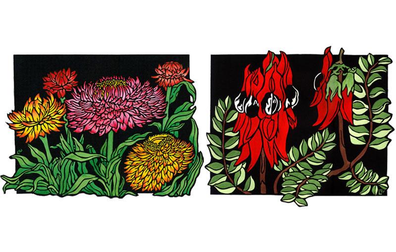 Strawflowers & Sturt Desert Pea Design