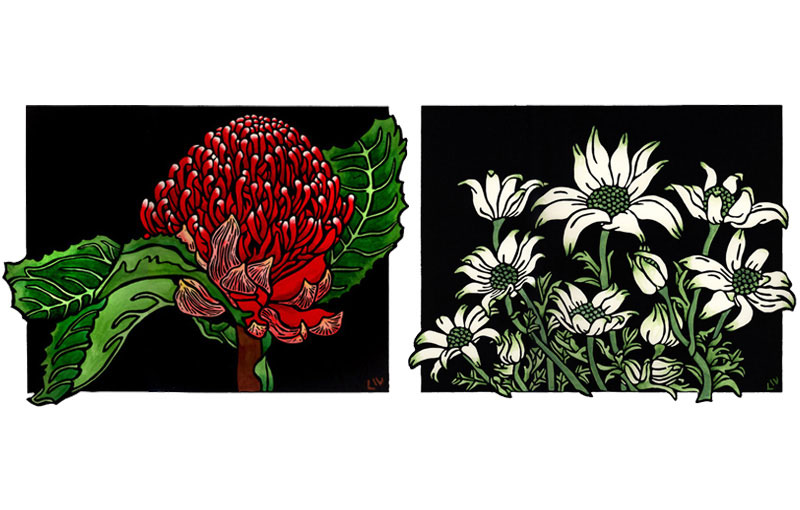 Waratah & Flannel Flower Design
