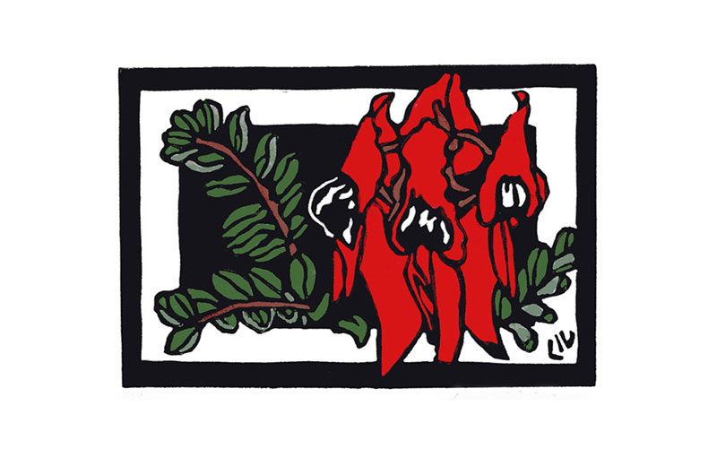 Australian Floral Emblem – South Australia