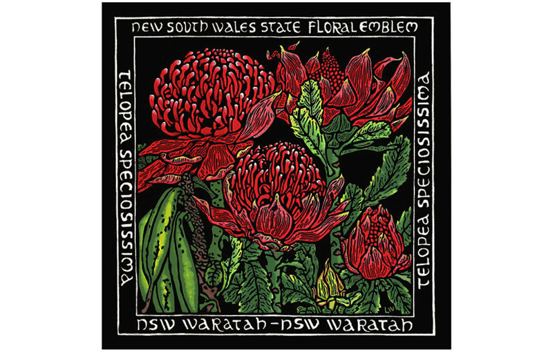 New South Wales State Floral Emblem