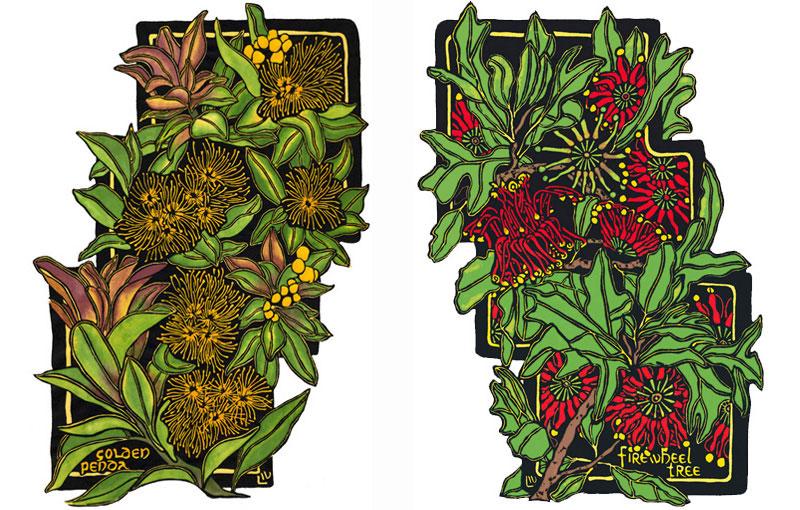 Rainforest – Golden Penda & Tree Waratah