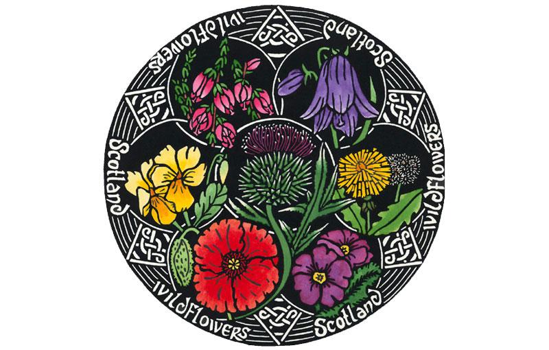 Wildflowers – Scotland Circles
